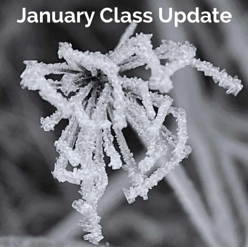NEWS: January update to Dance North Youth Classes